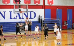 Lady Loggers fall in overtime against Parkland Cobras