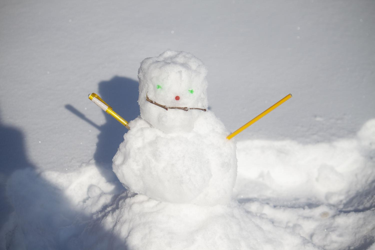 A snowman is seen that was made by a student Monday afternoon January 14, 2019.