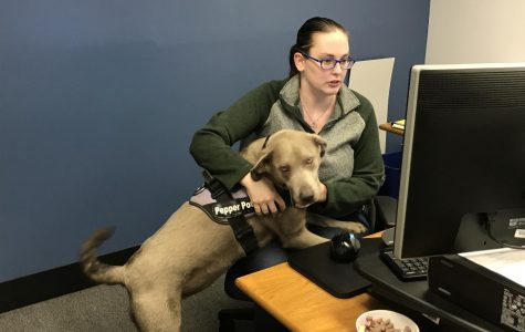 LLCC employee trains service dog for self, others