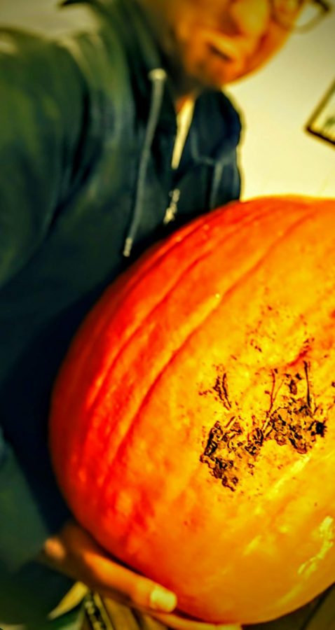 The Autumn Grinch doesn't get fascination with pumpkin patches