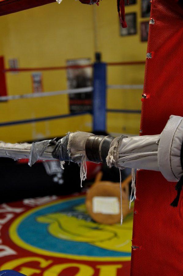 %22El+Maestro+boxing+ring+4%22+by+Serge+De+Gracia+is+licensed+under+CC+BY-NC+2.0